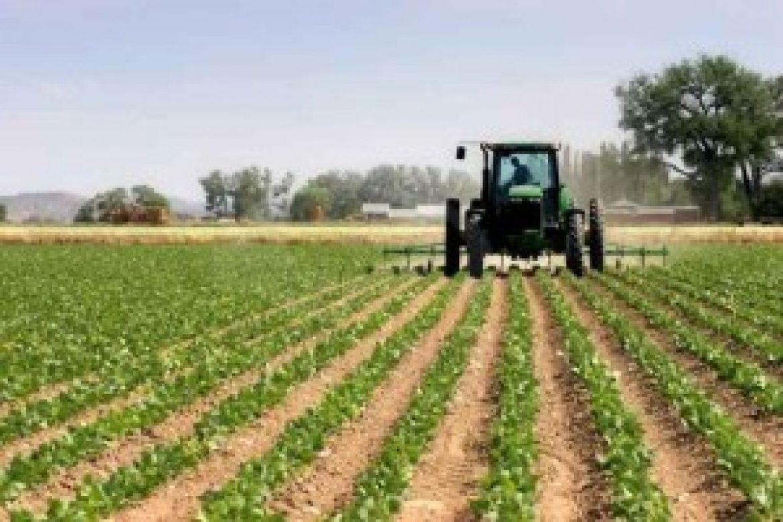 Bando Isi-Agricoltura 2016: 45mln di euro per il miglioramento della sicurezza nelle micro e piccole imprese