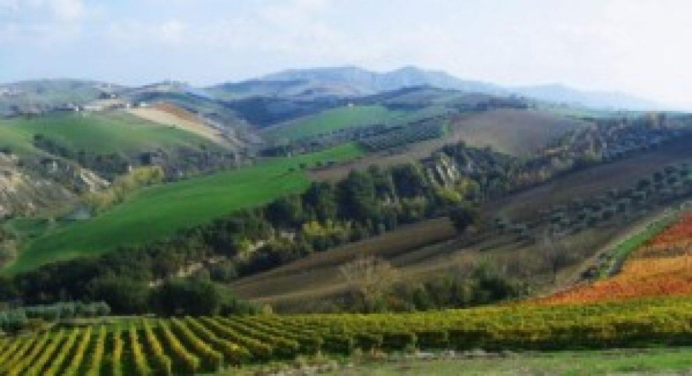 Pubblicato il Regolamento attuativo della Banca della Terra d'Abruzzo