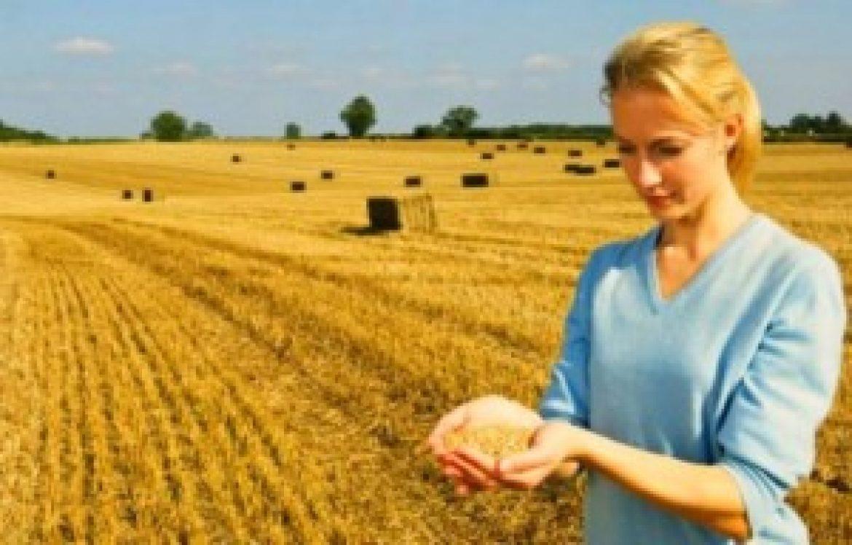 Finanziamenti ai giovani per il subentro in agricoltura