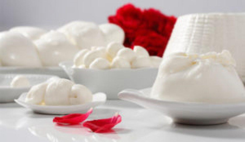 ALIMENTARE – Diventa obbligatoria l'etichettatura d'origine per il latte e i prodotti caseari